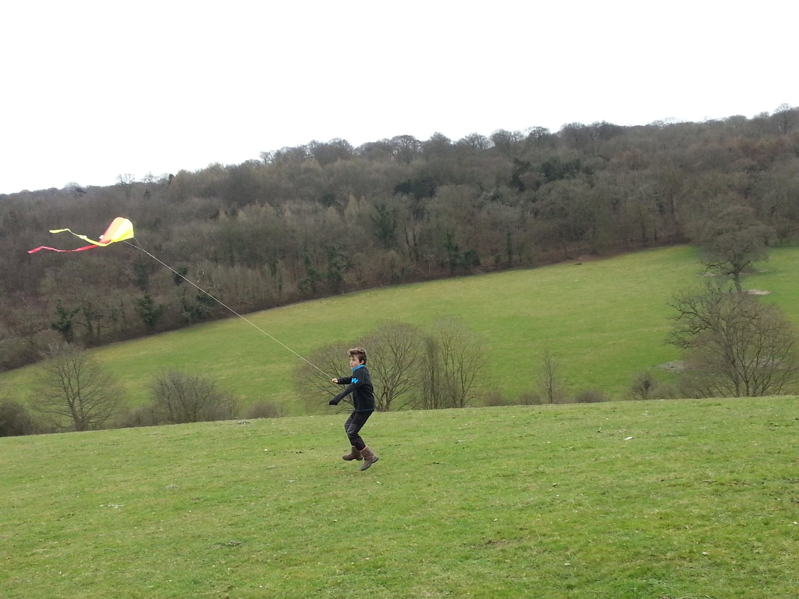 kite flying Polesden Lacey