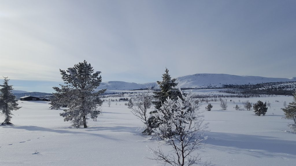 Venabu, Cross country skiing, Norway